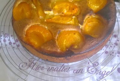 Aprikokuchen