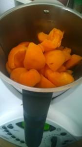 aprikosetm